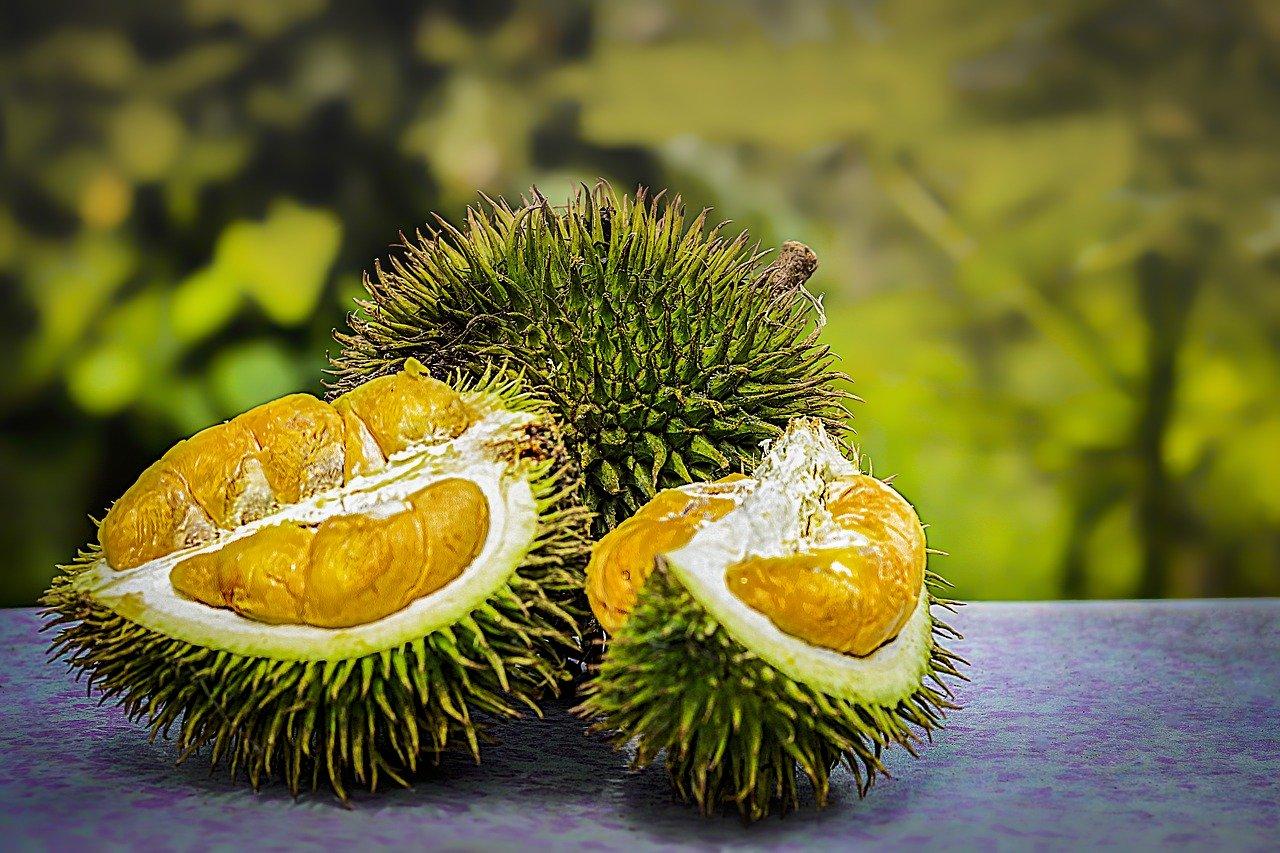 7 Khasiat Ajaib Makan Durian Bisa Bikin Melongo (Foto: Pixabay)