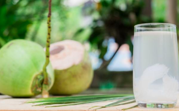 Minum Air Kelapa Hijau Ternyata Khasiatnya Sangat Mengejutkan