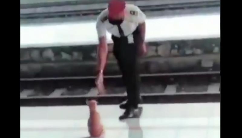 Petugas Stasiun Pasuruan, Jatim, sodorkan tangan ke kucing oranye. Eh, si kocheng oren salim! (Foto : Istimewa)