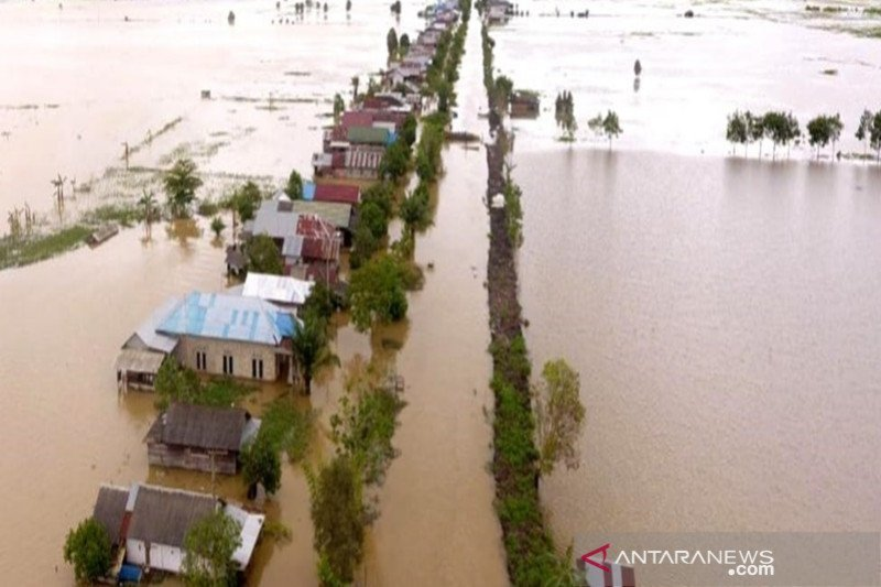 Banjir Kalimantan Selatan. Foto: Antara