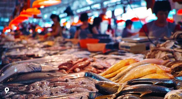 Ikan Indonesia segera Go International, KKP gaandeng lembaga Internasional dalam memasarkannya ke dunia (Foto : Istmewa)