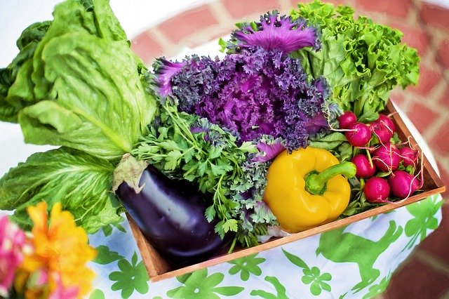 Ilustrasi sayuran. Foto: Pixabay