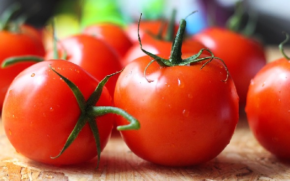 Efek Samping Makan Tomat Bikin Melongo, Sangat Berbahaya