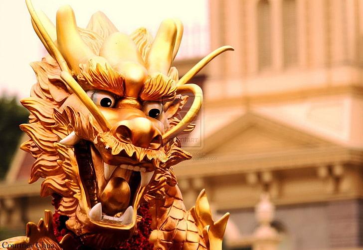 Benarkah Fengsui Bisa Membawa Kemakmuran? Ternyata…