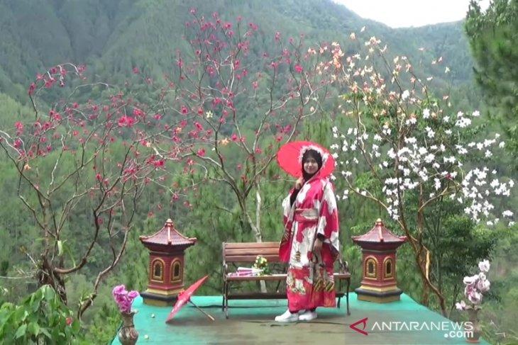 Ilustrasi - Pengunjung menikmati wahana foto sakura di Taman Wisata Genilangit di Desa Genilangit, Kecamatan Poncol, Kabupaten Magetan, Jatim. (ANTARA/Louis Rika)