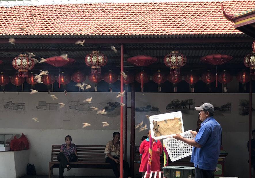 Pelepeasan burung pipit di Kelenteng Dharma Bhakti | Sumber: GenPI.co