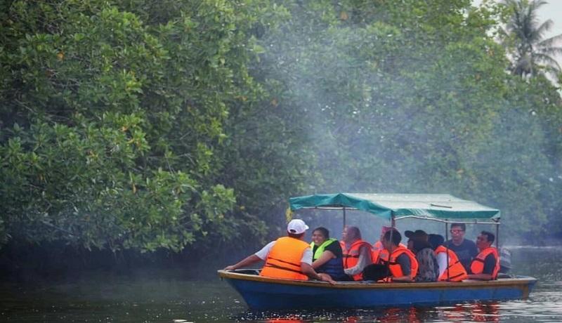 Mnyusuri Pengudang Bintan Mangrove di Bintan, Kepri. Foto: Leni
