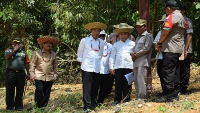 Presiden Jokowi meninjau Bukit Nyuling, Kelurahan Tumbang Talaken, Kecamatan Manuhing, Kabupaten Gunung Mas, Rabu, 8 Mei 2019. (foto: Istimewa)