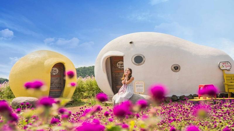 Salah satu pesona wisata di Jeju Island, Korea (foto: asianwonderlust.com)