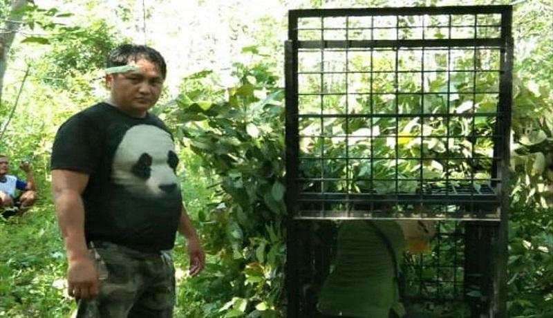 Petugas BBSDA Riau pasang perangkap untuk beruang. (ist)