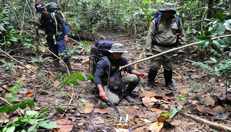 Petugas sedang membersihkan sisa-sisa jerat hewan di hutan. (ist)