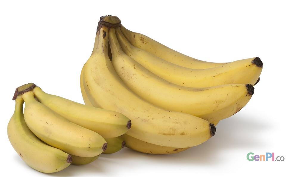 kandungan zat pada kulit pisang bisa dimanfaatkan untuk memutihkan gigi.